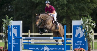 springen, springsport, horses, moussac, petersson, dutch sport horse sale, paarden, sportpaarden, springen, oliva, spanje, competitie