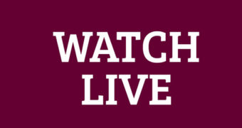 Live stream horse auction